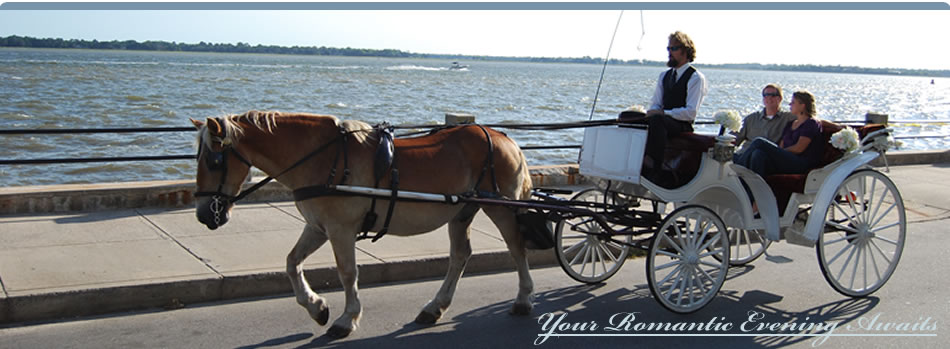 Charleston Sc Carriage Tours Night