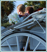 Charleston Coach provides horse carriage rides for a perfect evening on the town.